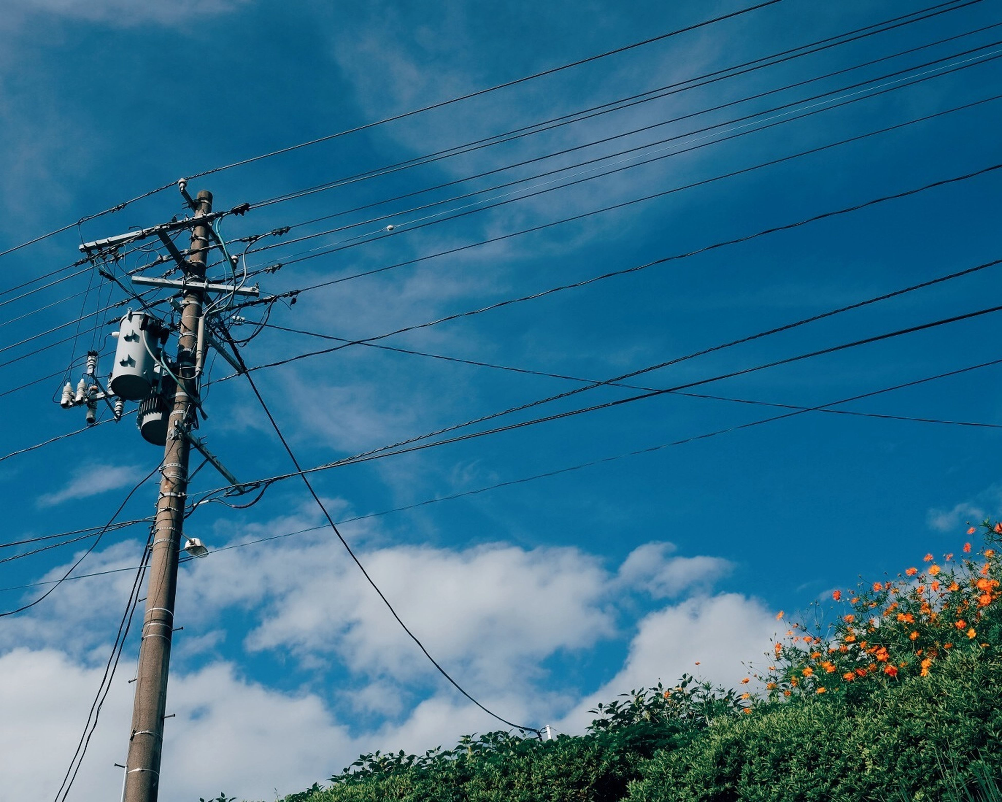 power line, electricity pylon, electricity, power supply, low angle view, cable, connection, sky, fuel and power generation, cloud - sky, technology, power cable, cloudy, blue, cloud, complexity, telephone pole, nature, no people, outdoors