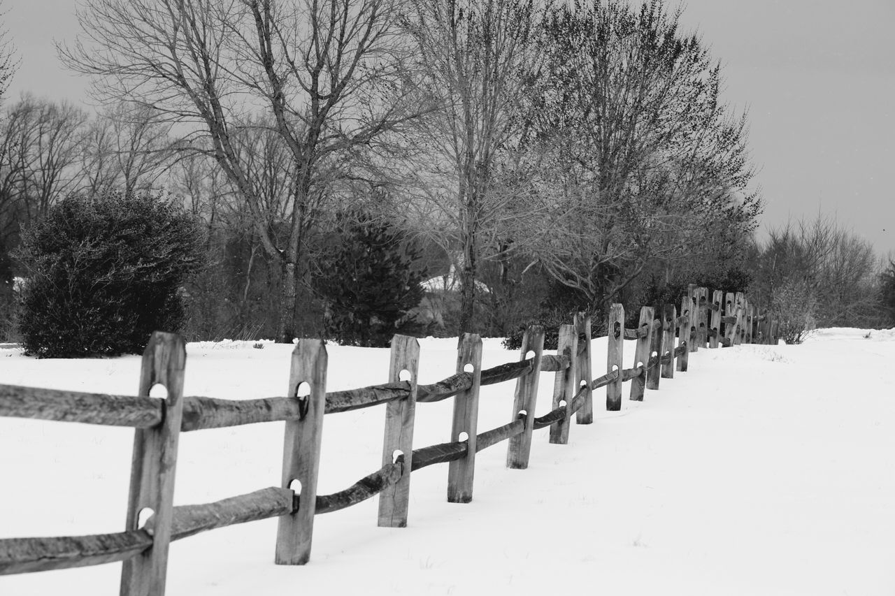 Fence Tree Picket Fence Outdoors Day Nature Protection Railing Wood - Material Tranquility No People Snow Bare Tree Tranquil Scene Sky Beauty In Nature JGLowe Freshness