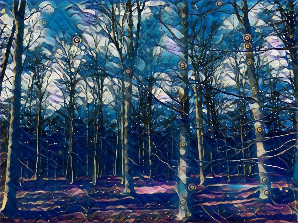 I Make My World The Way I Like It😍 Cold Outside,time For Creativity😎 Bare Trees In Winter Beauty In Nature Tranquility Beauty In Winter😍 Enjoy The Little Things For My Friends 😍😘🎁 Brrrrrrrrr❄❄❄❄ Cold Outside ❄⛄  Artistic Expression Expression Artistique Express Yourself ❤