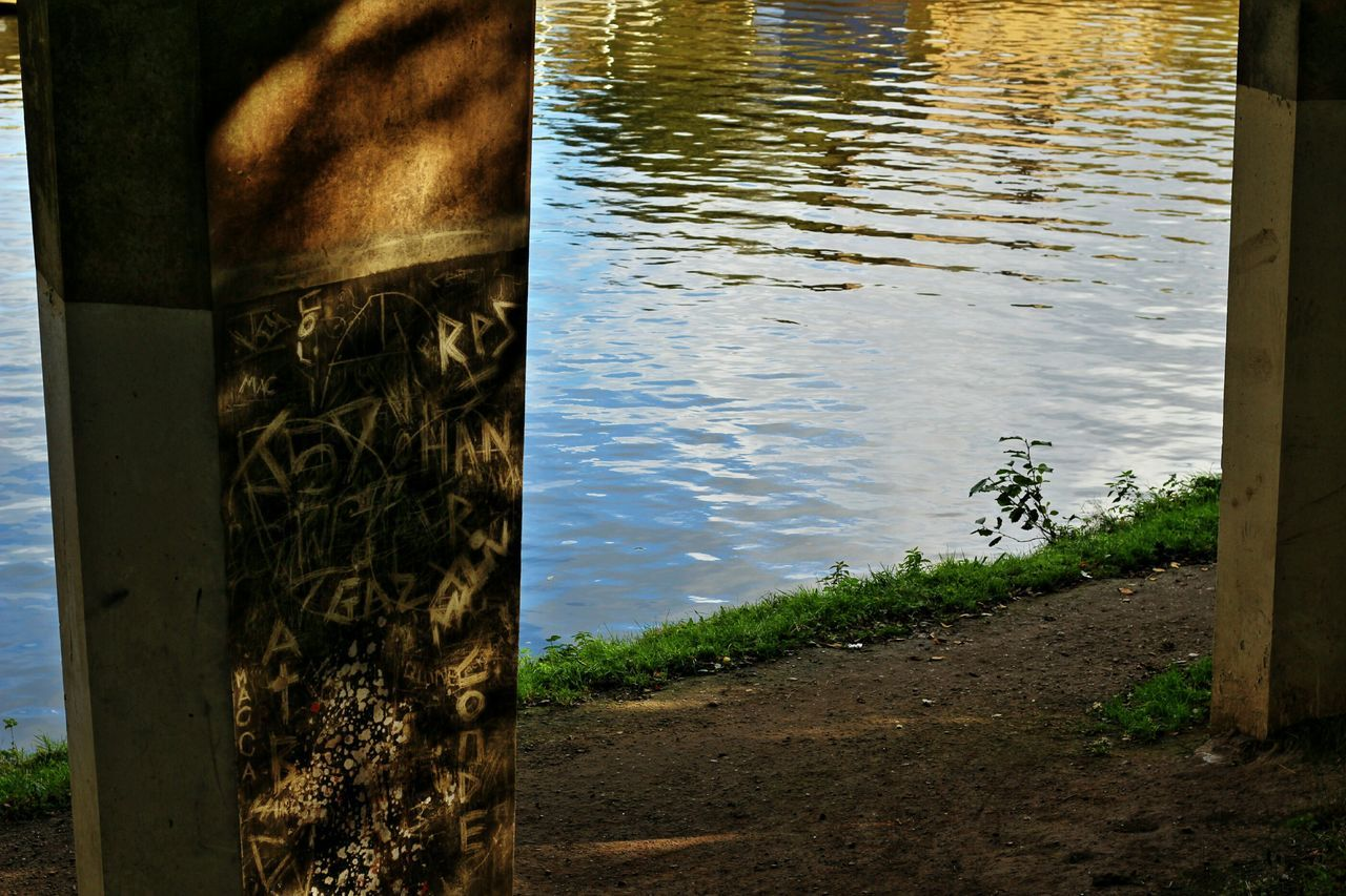 water, tree, lake, day, nature, tree trunk, outdoors, no people, growth, plant, close-up, beauty in nature