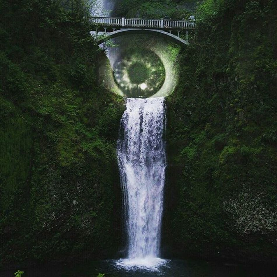Picoftheday Crying Forest Nature Eye Saveearth MyEditing on Picsart Editingapps