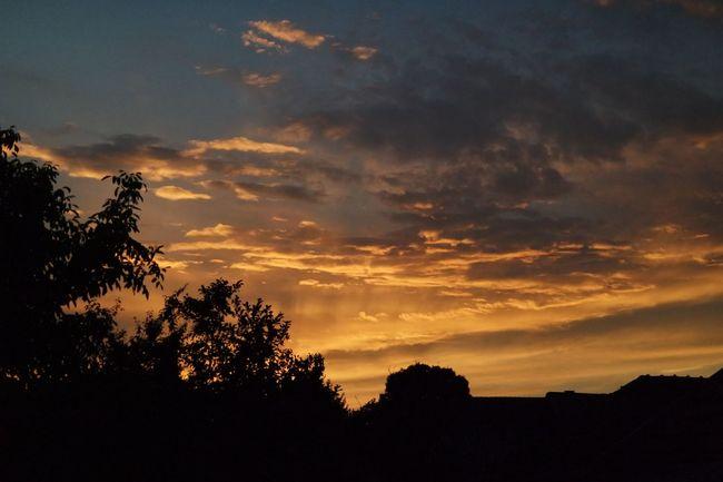 The Sunset Beauty In Nature Cloud Cloud - Sky Clouds Clouds And Sky Dramatic Dramatic Sky Idyllic Landscape Nature Orange Orange Color Orange Sky Orange Sky Sunset Silhouette Sky Sunset Tree
