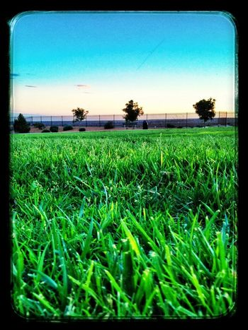 Sunset I Can Hear The Grass Grow Snapseed Editing  EyeEm Best Shots