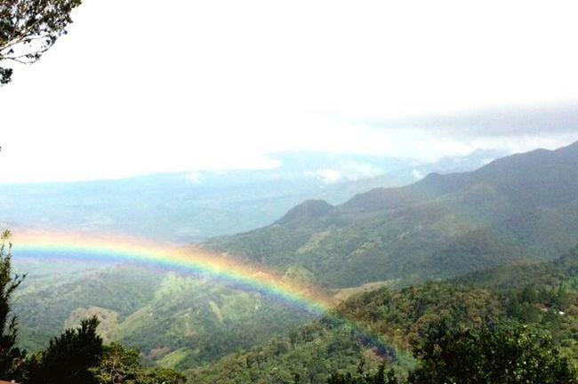 Colour Of Life Somewhere Over The Rainbow Rainbow