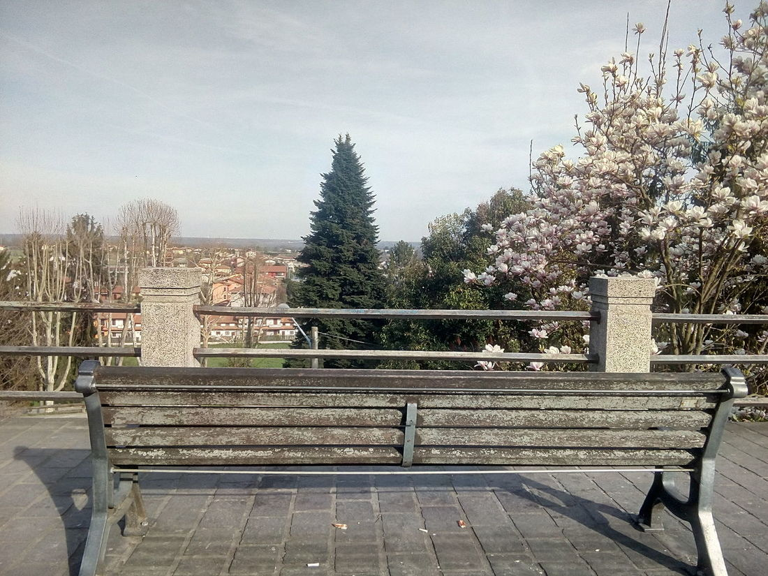 Sky Tree Built Structure Day No People Outdoors Architecture Tranquil Scene Nature Piemonte Italy FreeTime Panoramic