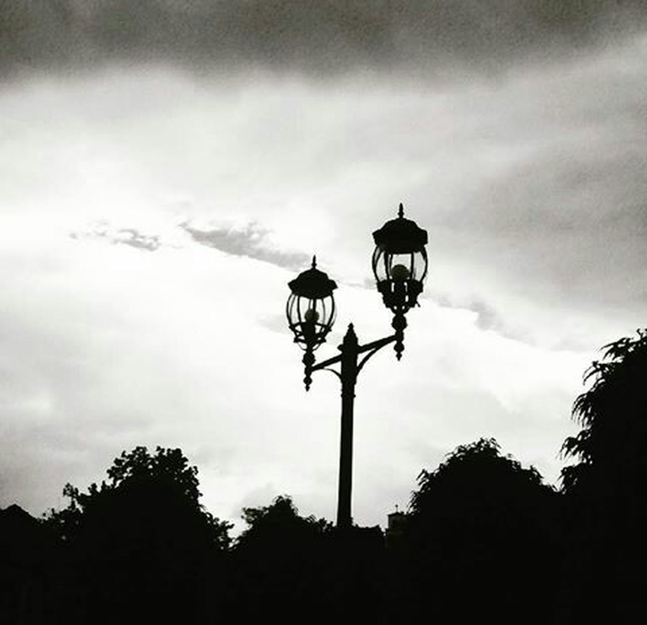 lighting equipment, tree, silhouette, street light, outdoors, low angle view, sky, no people, electricity, cloud - sky, day, nature
