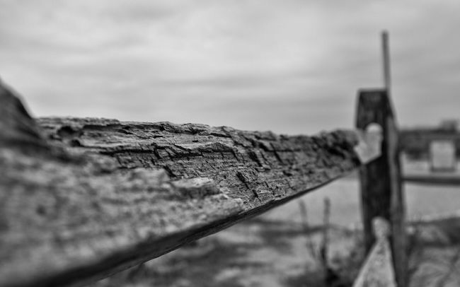 Jamaica Bay Wildlife Refuge NYC Winter 2015 Landscape Perspective StillLifePhotography Nycphotography Jamaica Bay Jamaica Bay Wildlife Refuge Outdoor Photography Fujifilm X100T