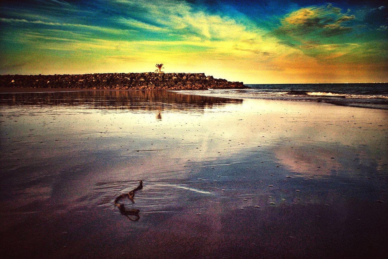 Painting In The Sky Naturelover Beach Photowalk Nature Corniche Fujairah 43 Golden Moments