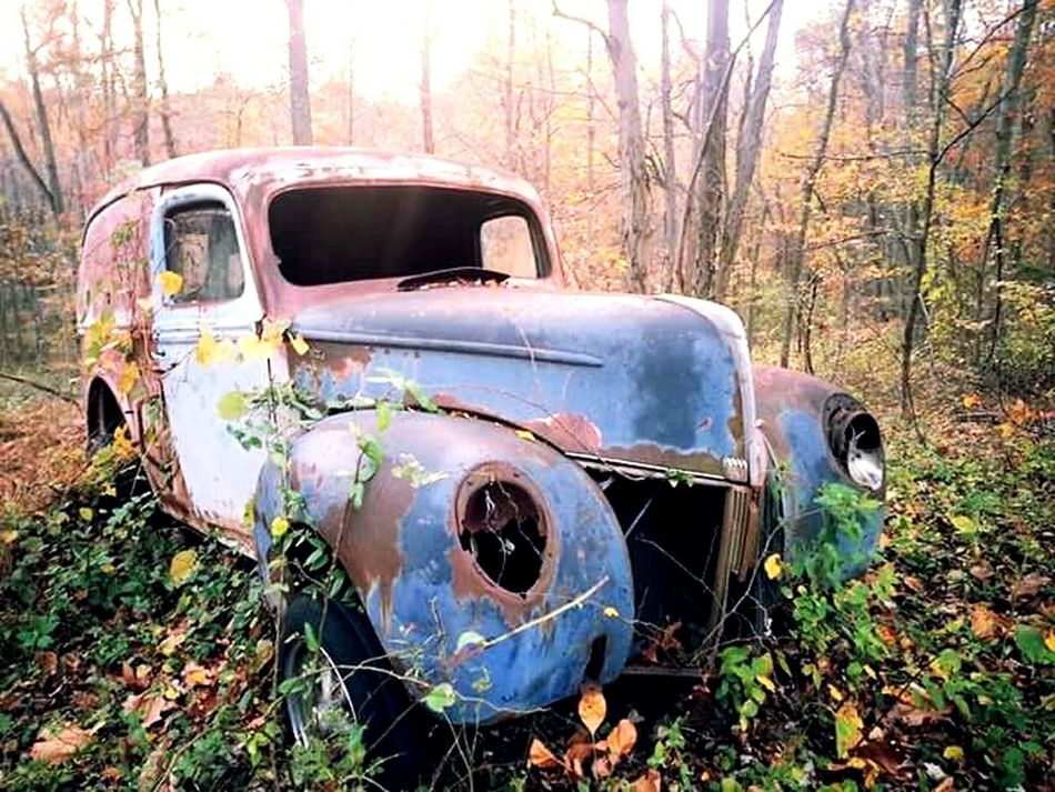 Relaxing Taking Photos Hi! Enjoying Life Hanging Out Check This Out Colors Making Memories No People Good Memories Outdoors Fall Trees Autumn Leaves Wandering Around Aimlessly Cool Stuff Old Car Abandoned Lieblingsteil