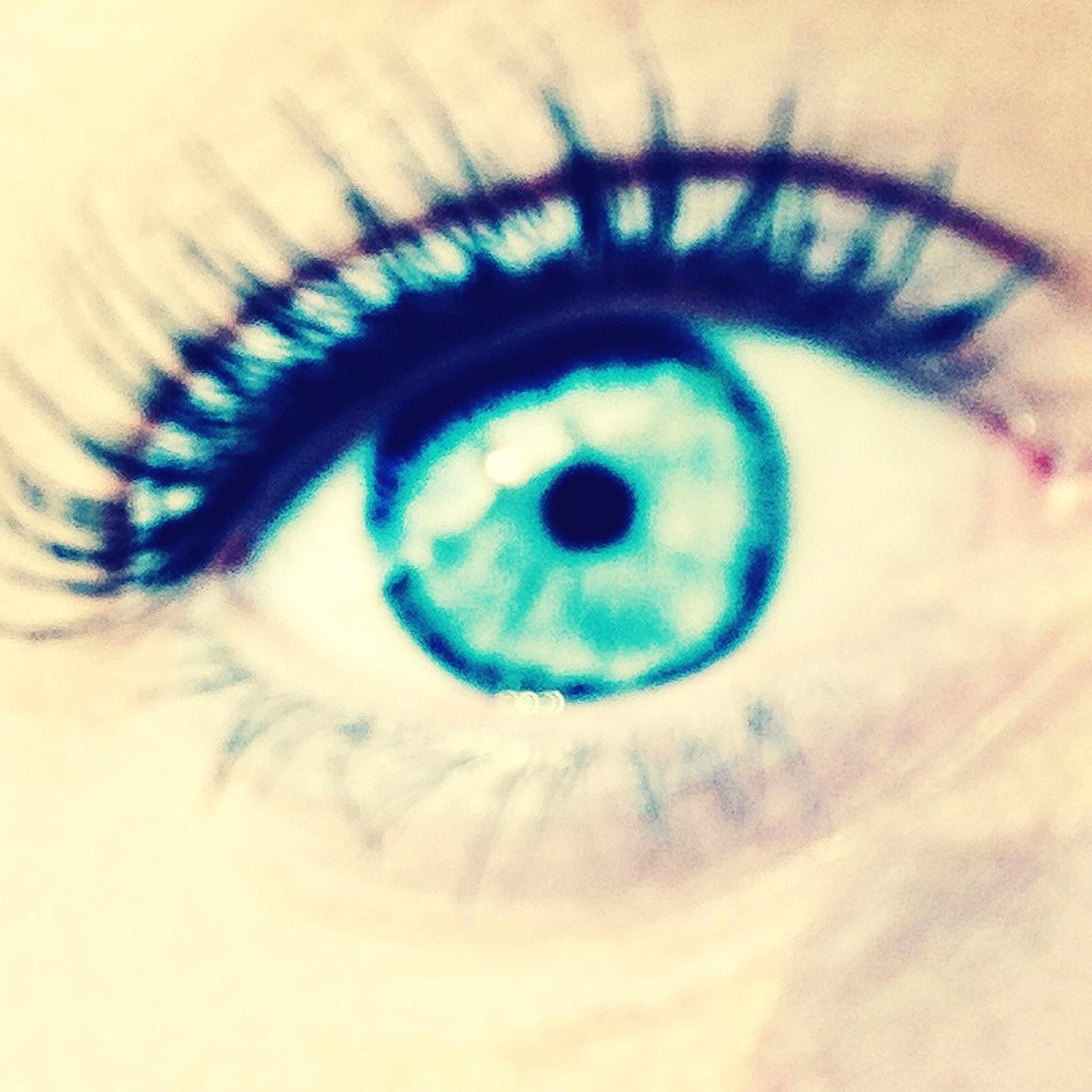 human eye, close-up, eyesight, indoors, looking at camera, portrait, eyelash, circle, sensory perception, part of, iris - eye, human face, eyeball, lifestyles, leisure activity, unrecognizable person, extreme close-up