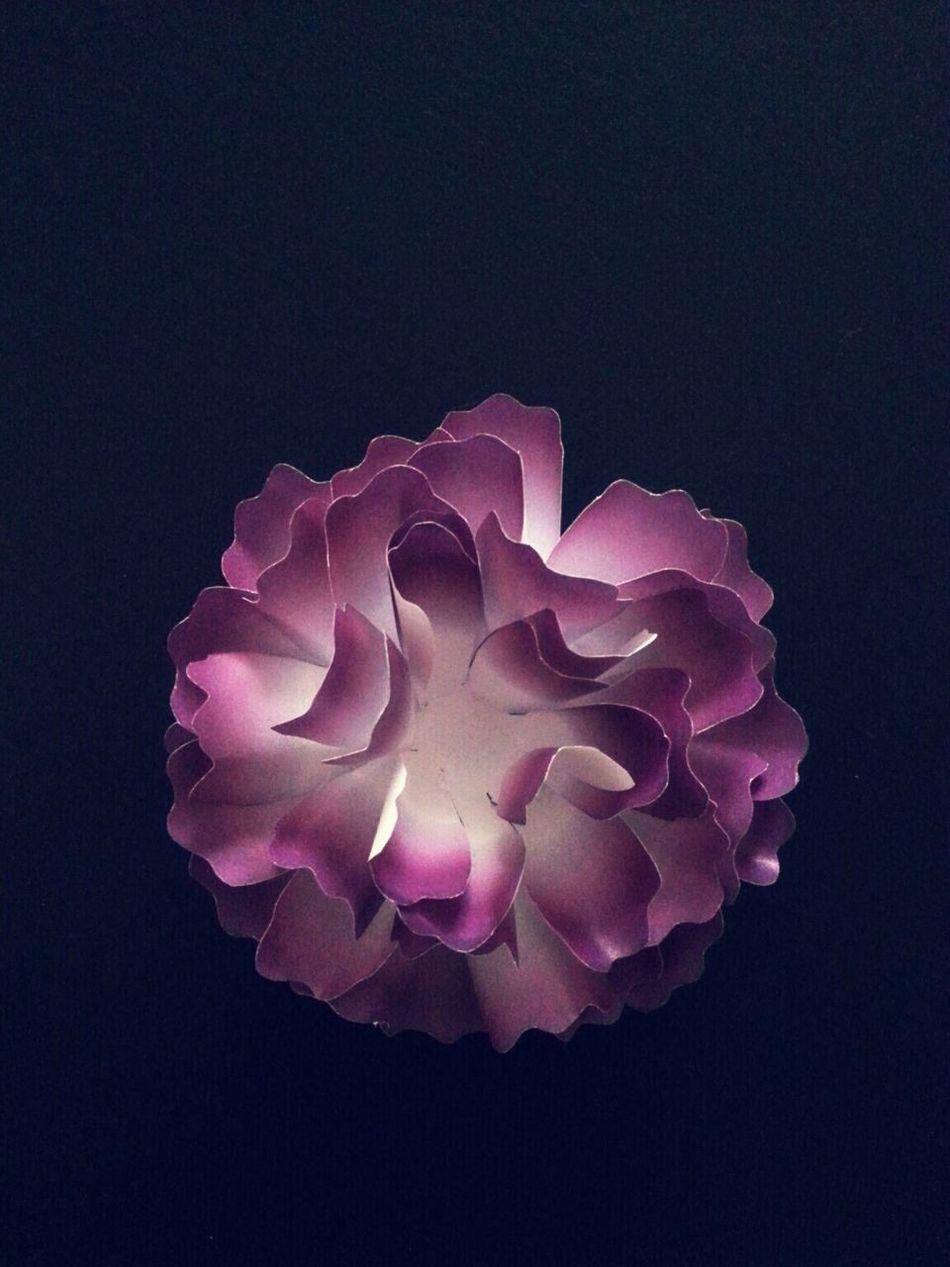 Paper Flower Handmade Crafts