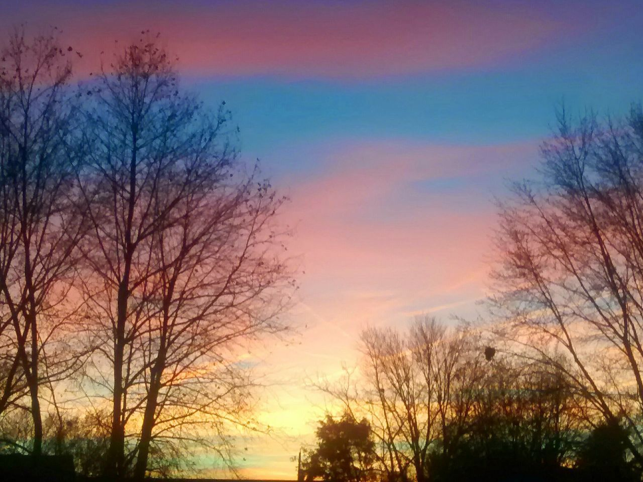 bare tree, sunset, tree, sky, beauty in nature, silhouette, nature, no people, cloud - sky, scenics, outdoors, low angle view, tranquil scene, tranquility, multi colored, architecture, branch, building exterior, day