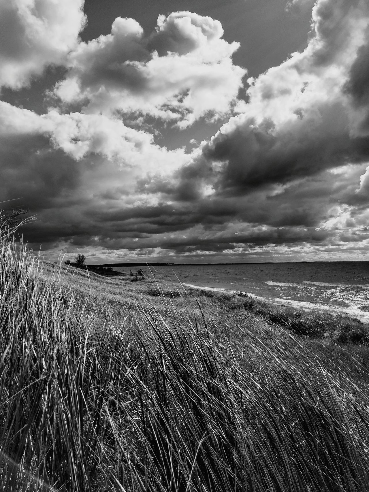 Pure Ludington Pure Michigan Landscapes With WhiteWall