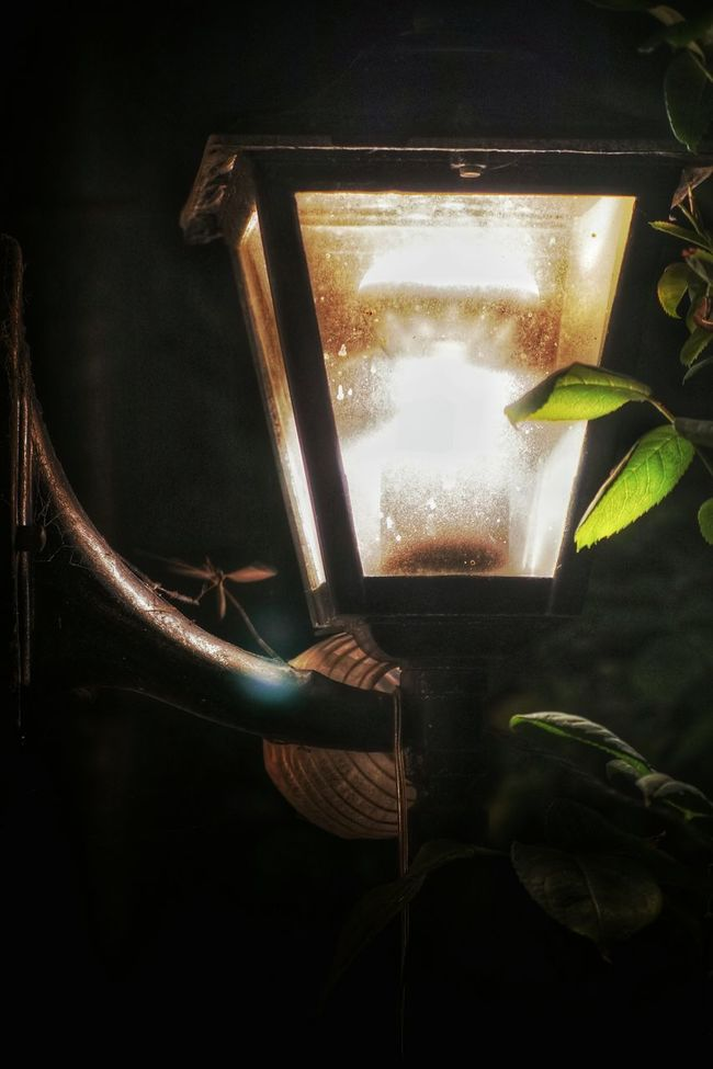 The colored version of garden lamp Electric Light No People Glass - Material Garden Lighting Electricity
