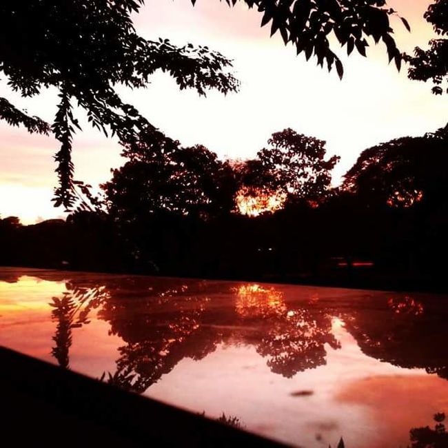 Silhouette Mirror Sunset Silhouettes Sunset Shadow Color Outside 43 Golden Moments Light Source Light Red Reflection Fresh On Eyeem