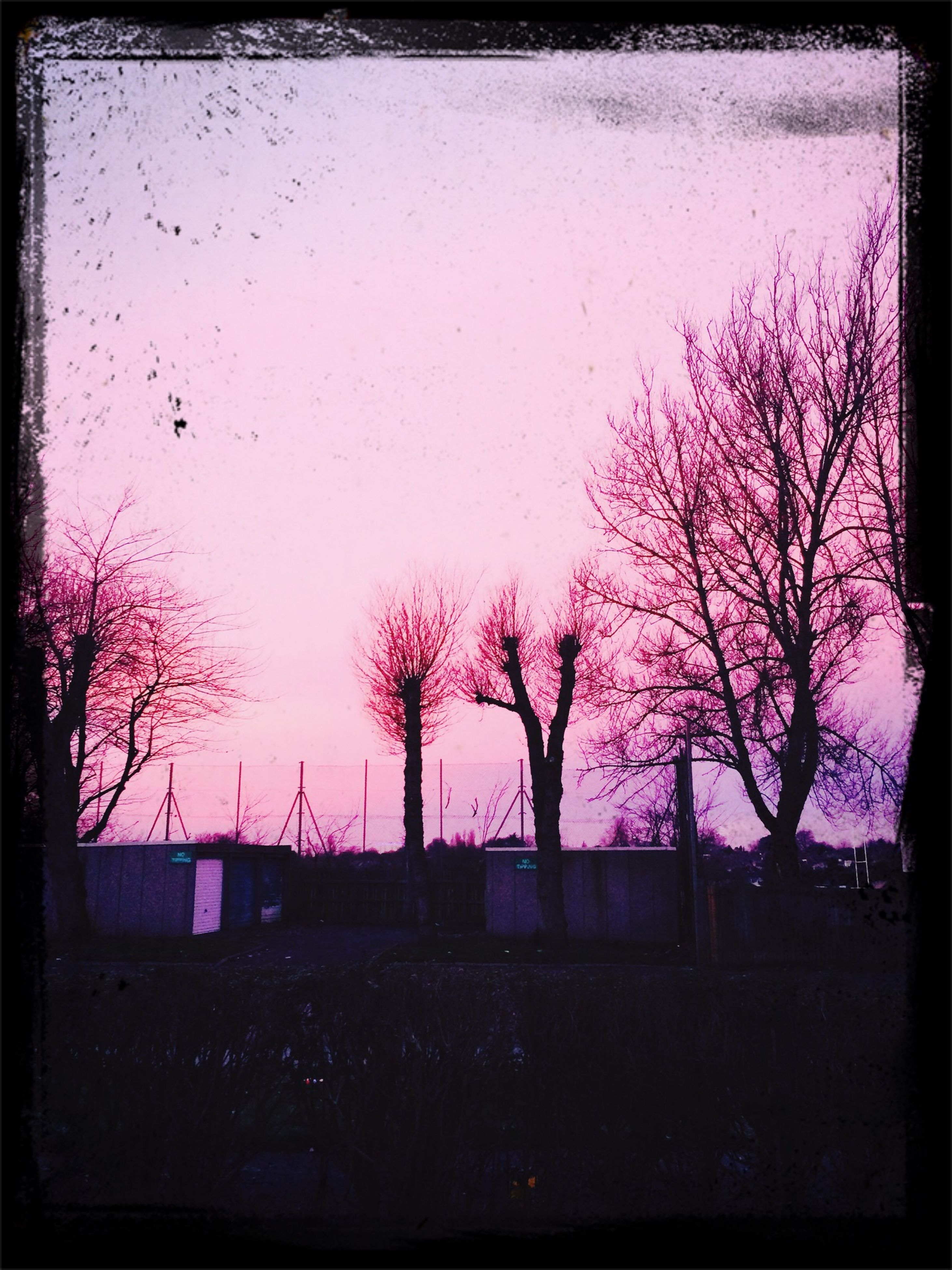 transfer print, auto post production filter, tree, silhouette, bare tree, building exterior, built structure, architecture, clear sky, sky, branch, dusk, sunset, nature, copy space, outdoors, house, pink color, beauty in nature, vignette