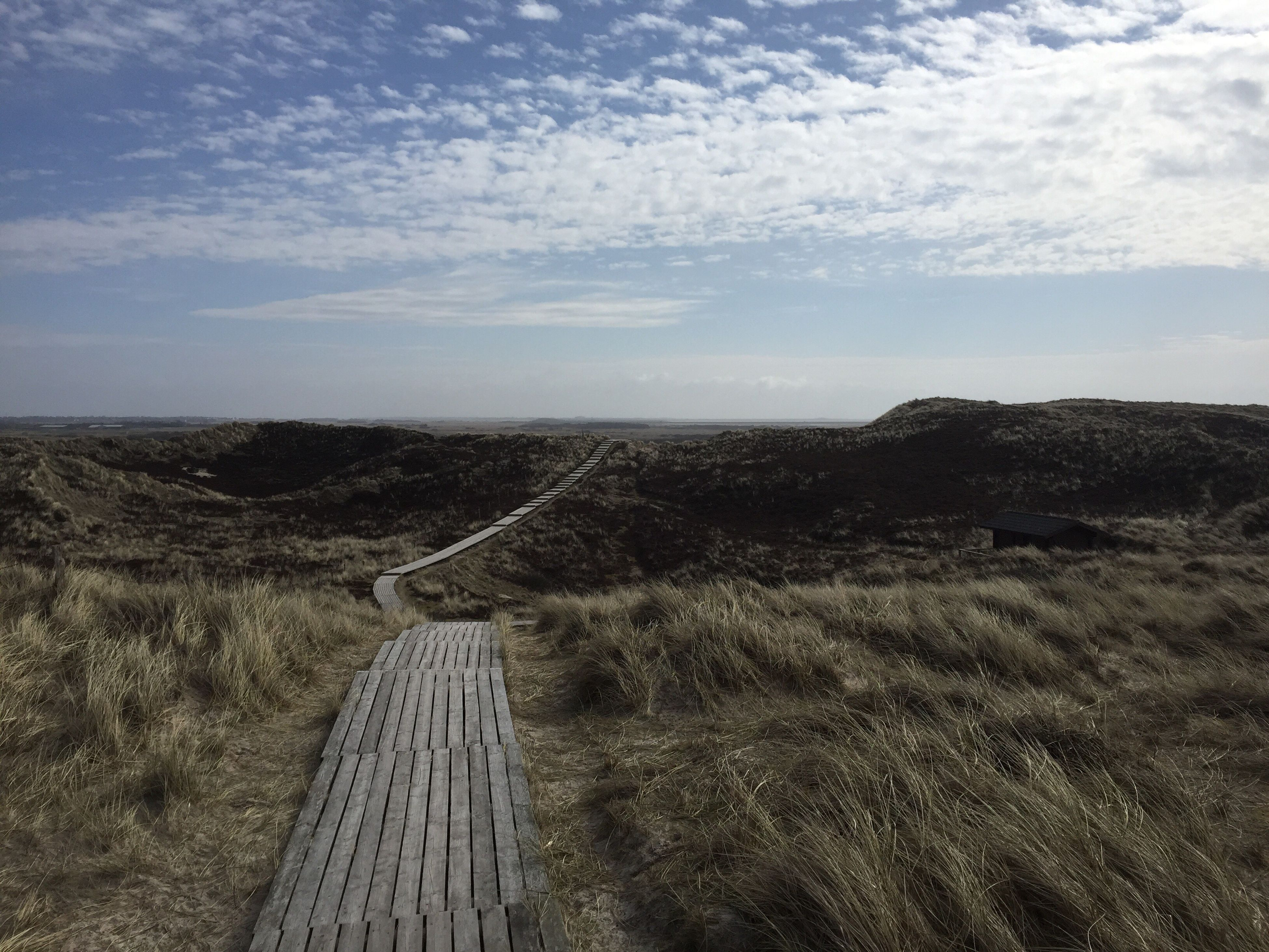 the way forward, tranquility, sky, tranquil scene, pathway, long, cloud - sky, narrow, footpath, nature, scenics, field, boardwalk, walkway, non-urban scene, day, growth, outdoors, blue, remote, beauty in nature, sea, solitude, leading, surface level