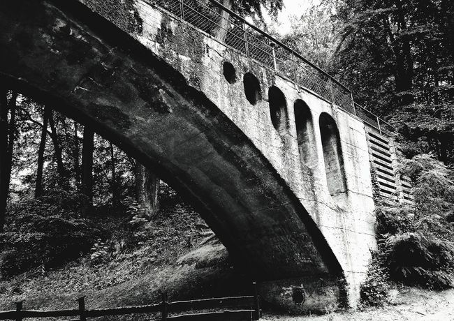 EyeEmNewHere Bridge Old Buildings Day Architecture No People Outdoors Built Structure Tree Close-up Sky Blackandwhite