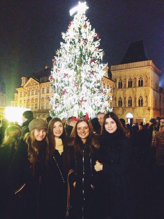Christmas Christmas Tree Prague Praha2014