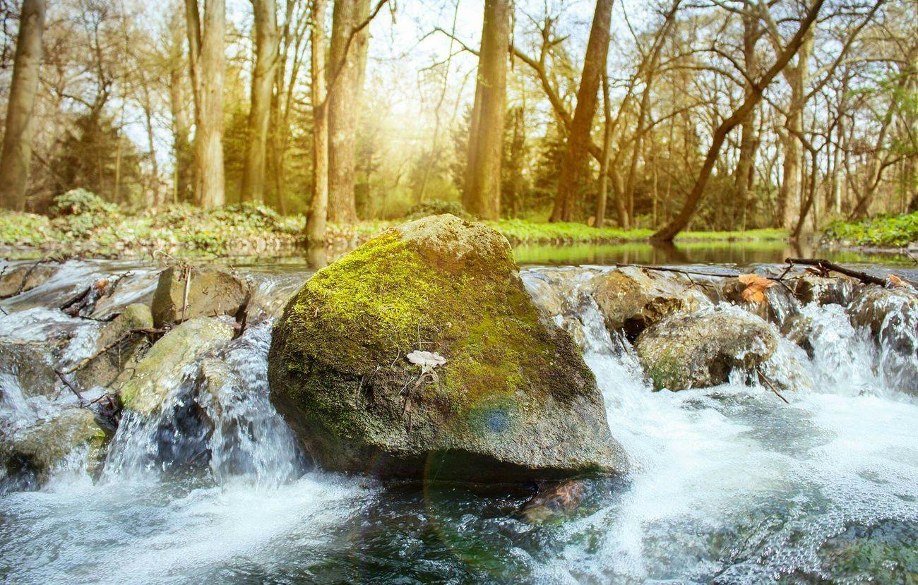 Water Botanical Gardens Canon Photography MyArt Byutiful Garden Long Exposure