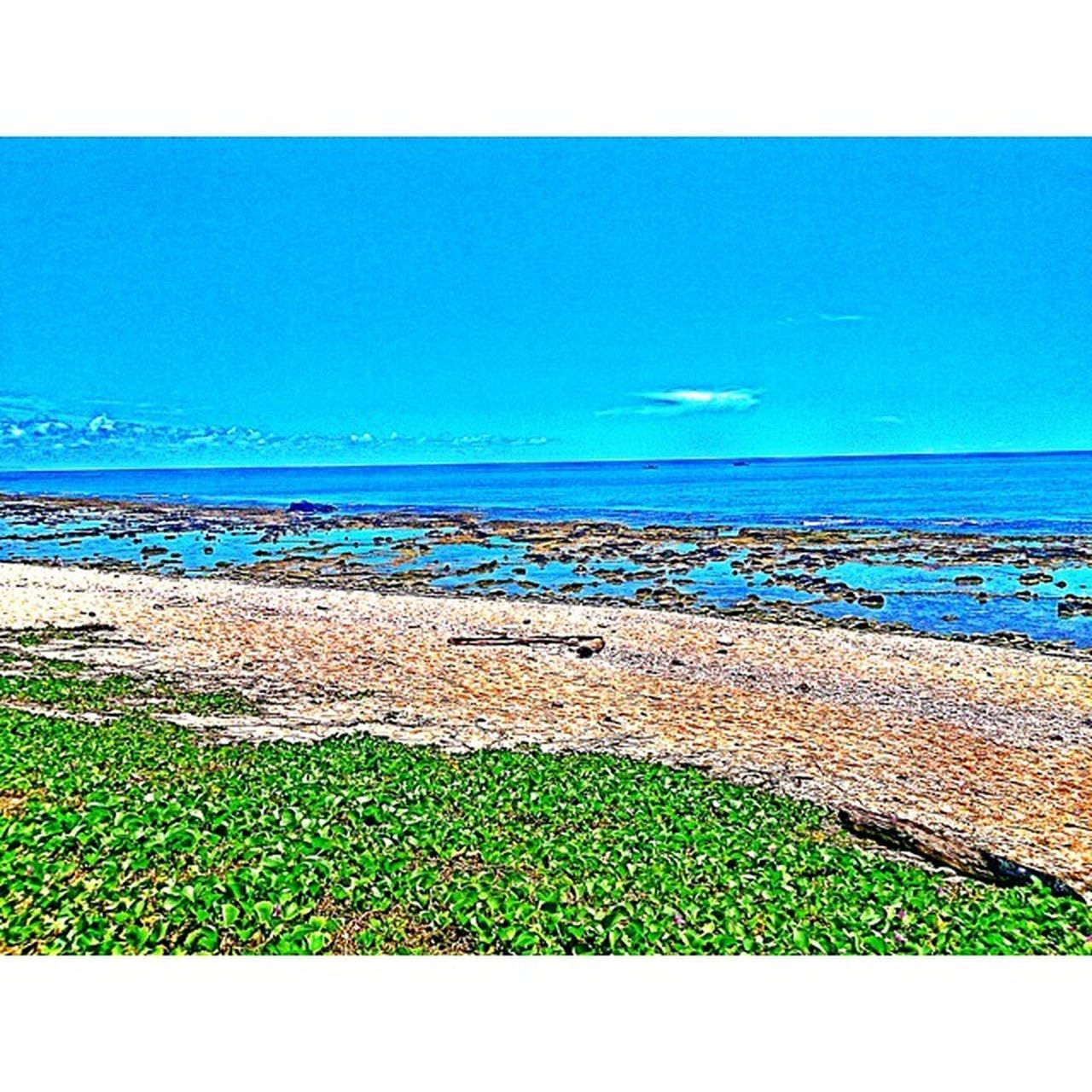 兩天一夜的綠島遊 說好不是很好說不好也沒有不好 希望下次能去多天一點 事先做多一點規劃 下次一定要浮潛哈哈哈 希望下次能跟同學們一起去 綠島 熱 盛夏 暑假 開學 大學生 期待 緊張 浮潛 約定 Summer Vacation Greenisland Excited Happy Beautiful Beach Ocean BBQ Yummy Sky Taitung Taiwan