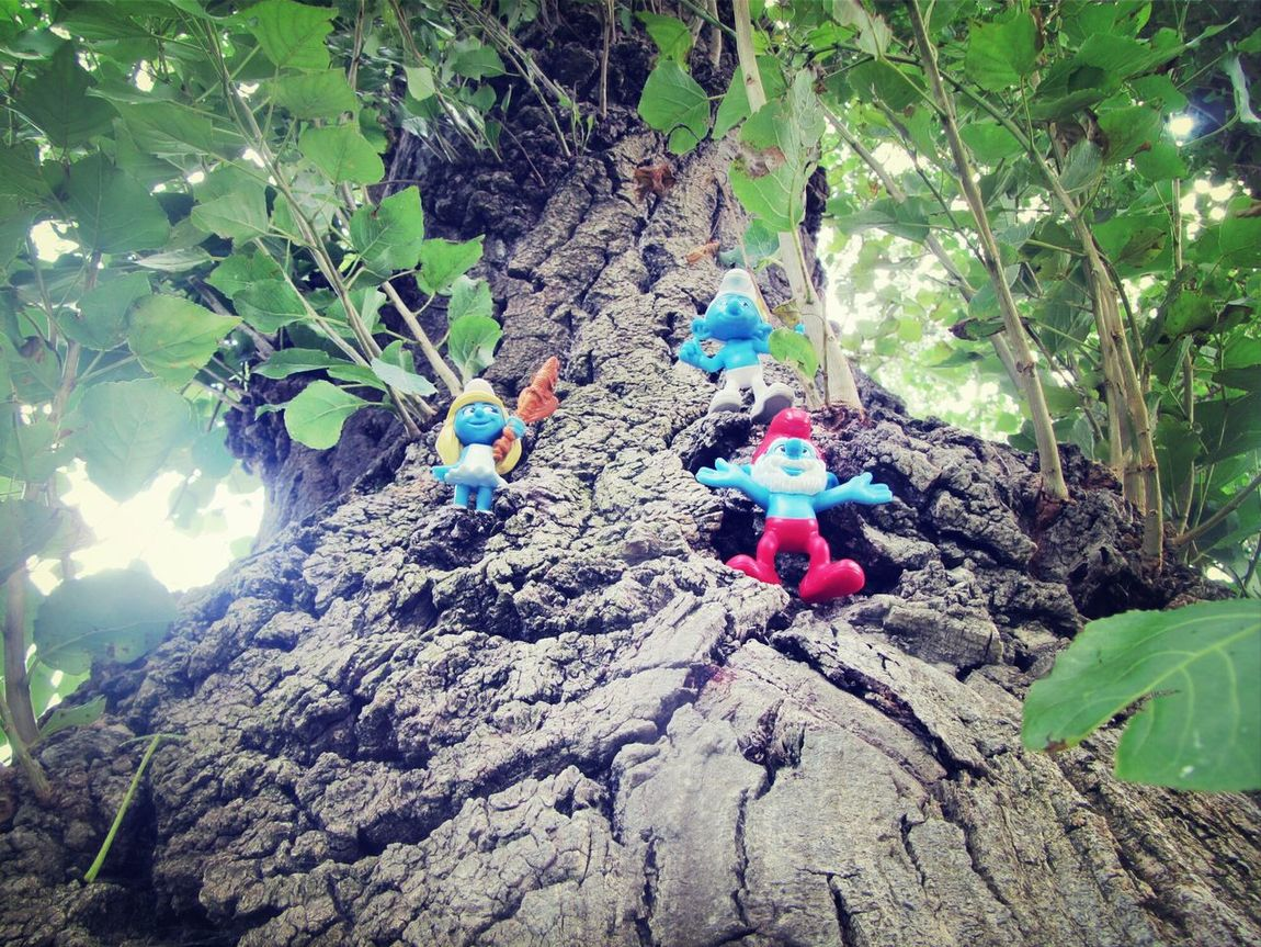 The Smurfs on the Tree.. Something Green Friday Spotting Smurfs The Smurfs Artistic Photo Day Toys In Nature Toys Park Nature Smurfs Little Toy Trees Trees And Nature Leafs Toy Smurfs On Tree Looking Up