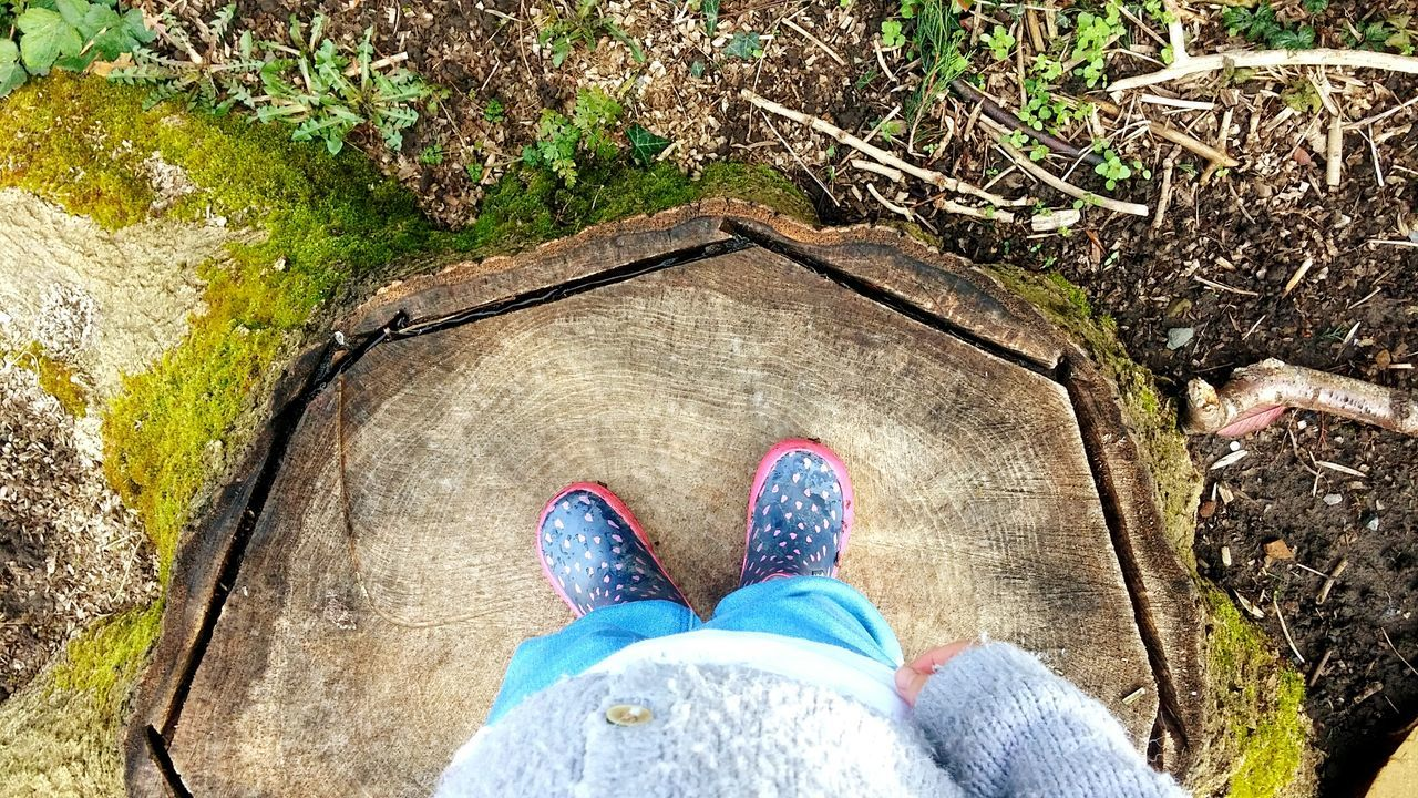 Nature On Your Doorstep Nature_collection Nature Photography EyeEm Gallery Back Garden Tree Stump Explorer Exploring Little Explorer Little Girl My Daughter Wellies  Showcase March The Great Outdoors With Adobe The Great Outdoors - 2016 EyeEm Awards People Nature Human Hand Lifestyles Standing High Angle View Outdoors Human Leg Low Section Day Personal Perspective Real People One Person Human Body Part