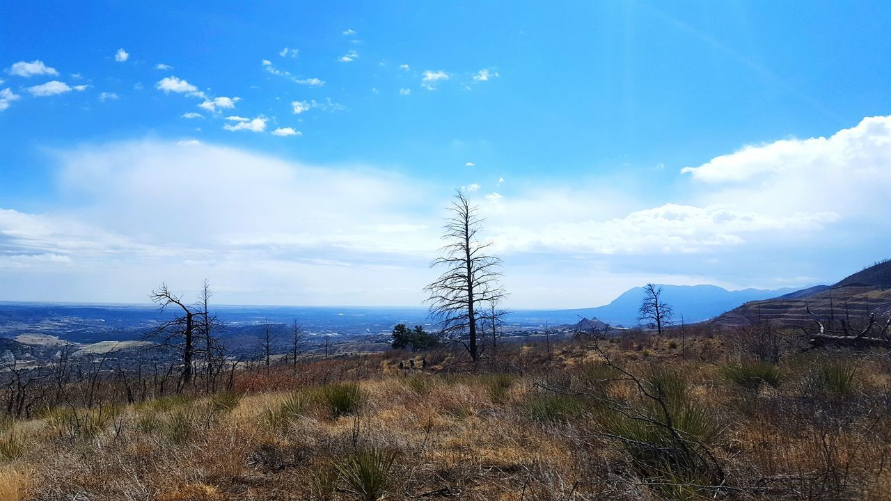 Hike HikeLife Landscape Sky Nature Tree No People Outdoors Scenics Mountain Cloud - Sky EyeEmNewHere Optoutside Beauty In Nature Exploremore Nikon Hiking Solitude Outdoor Photography Wildernessculture Distant Mountains Trees Blue Sky Outdoorlife Wanderlust