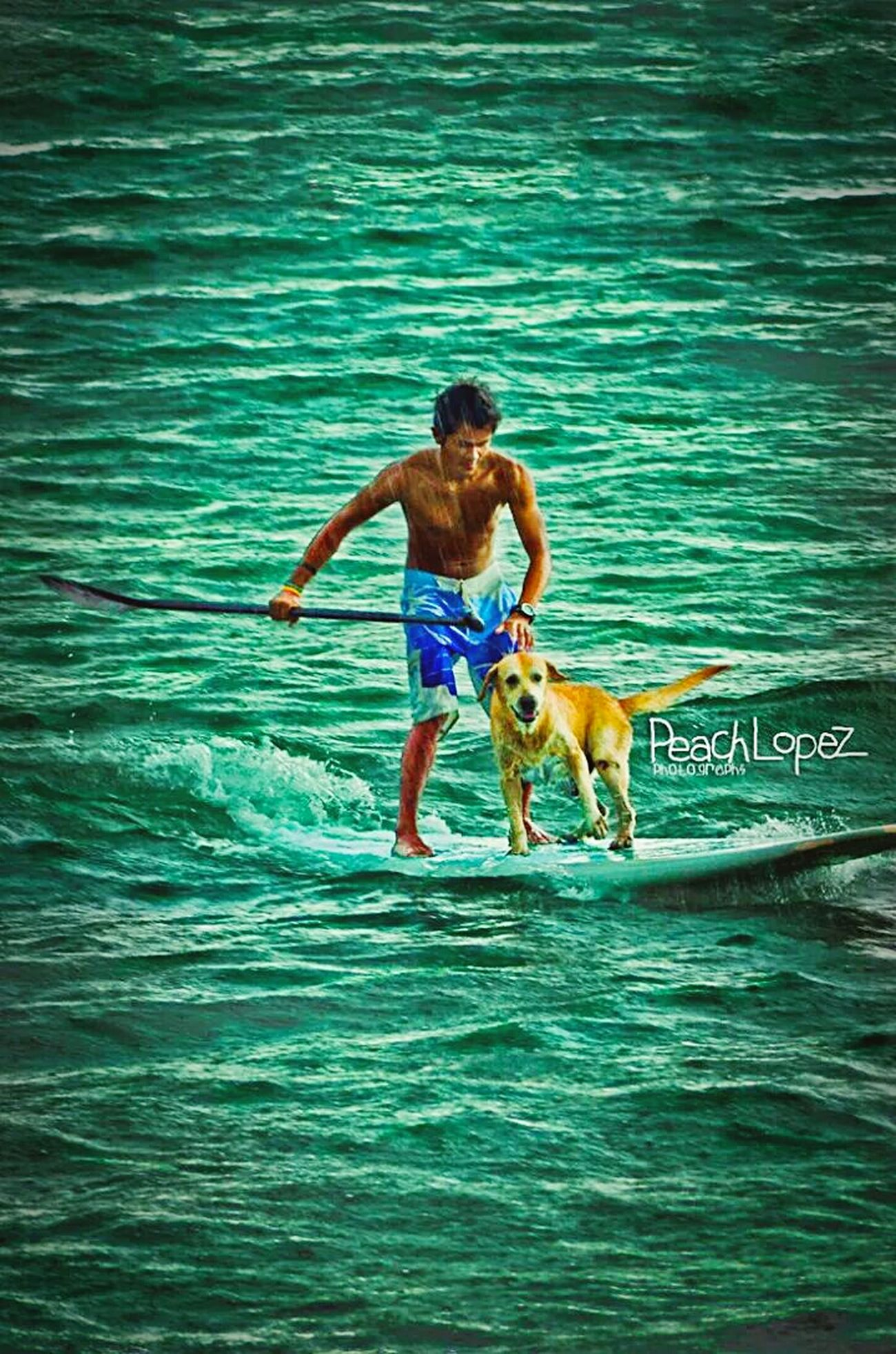 The macho guy and his human. Beach Surfing Surf Seascape Water Launion Dog Doglife Showcase: November