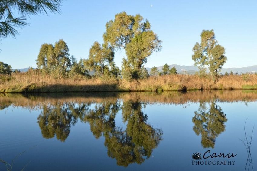 Reflection Nature Tree Water Sky Lake Day Tranquility Nature Photography Nikon D3200 Nikon Photography Nikonphotography EyeEm Gallery Cielo Nikon Tree Beach Nature Winter Beauty In Nature No People