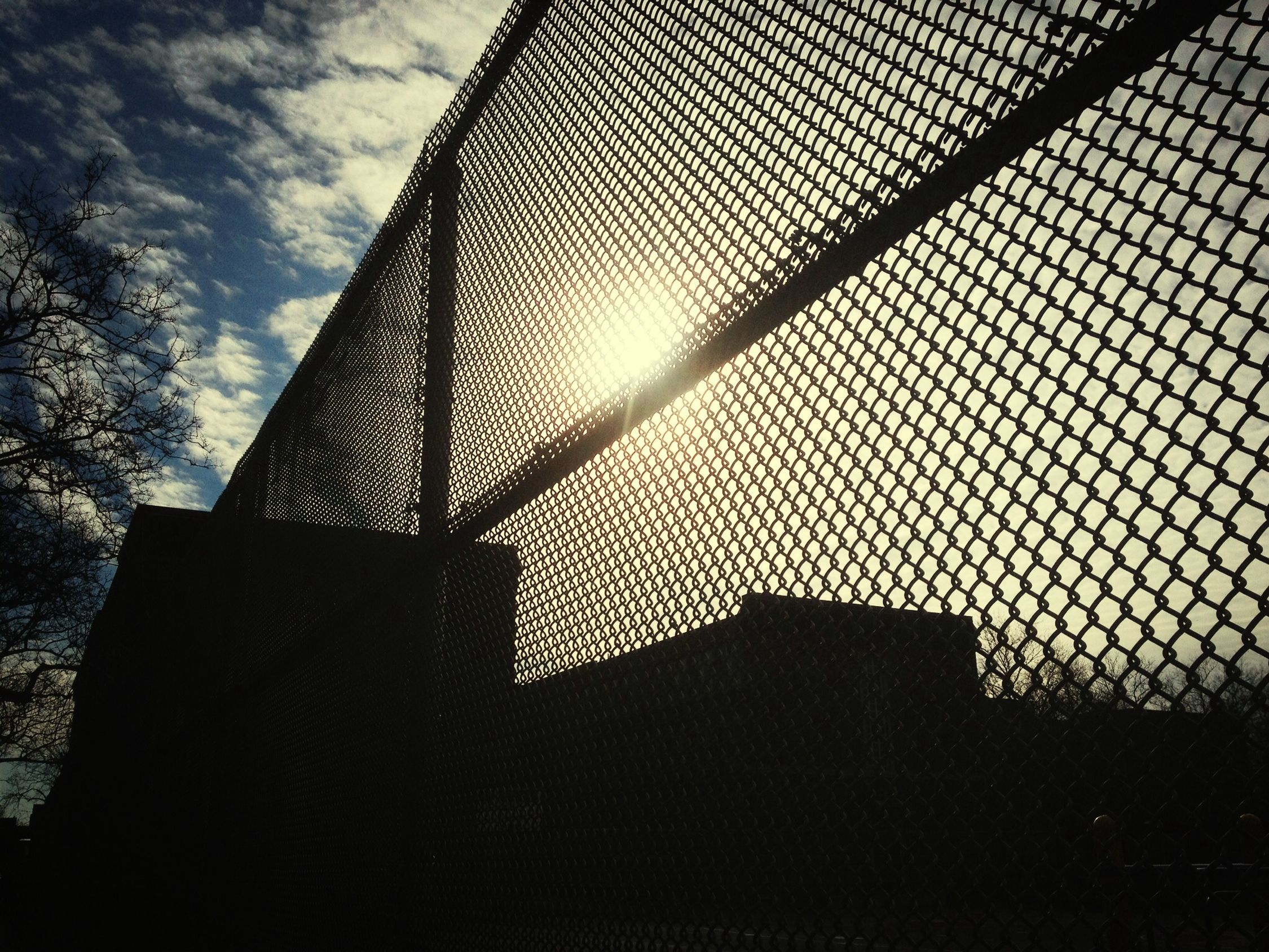 Other side of the fence Winter SunSun Skyporn Urban