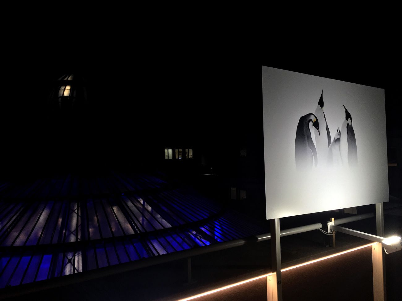 No People Illuminated Indoors  Expo Museum Design Art First Eyeem Photo EyeEm Best Shots Rooftop Blue Painting Likeforlike Architecture Light And Shadow Night Nightphotography White View Perspective Light Outdoors Paris Photography Picoftheday