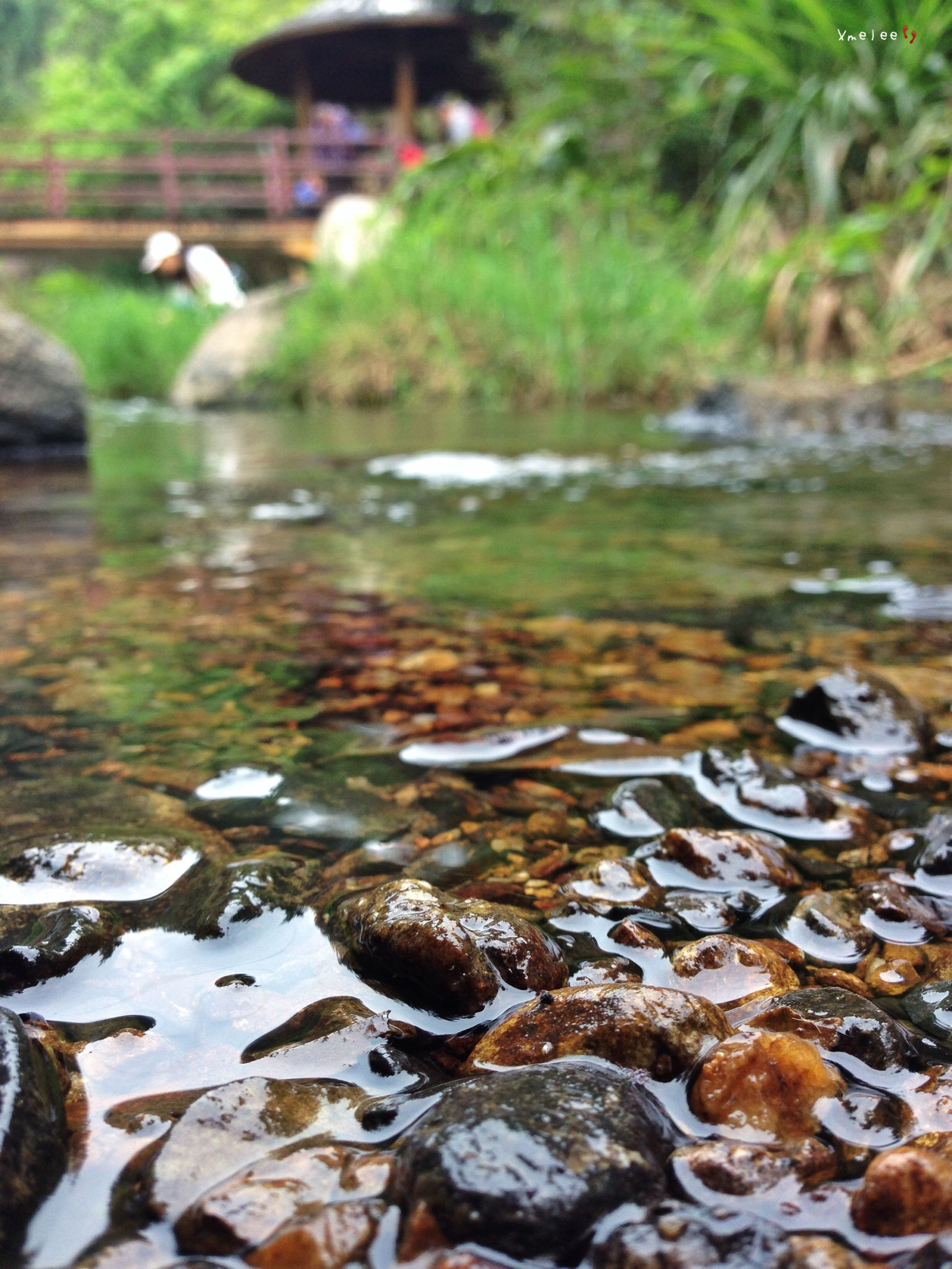 water, rock - object, surface level, stone - object, nature, selective focus, stone, focus on foreground, stream, tranquility, river, outdoors, beauty in nature, day, no people, close-up, rock, flowing, pebble, pond