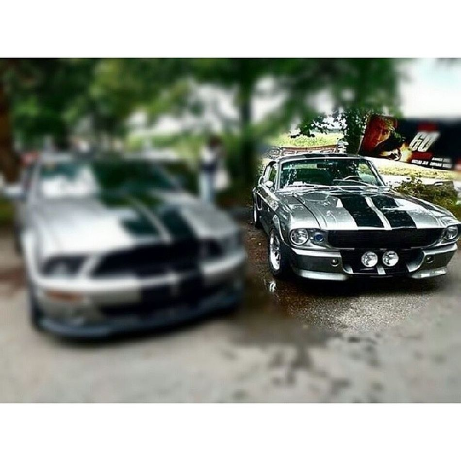 67mustang Shelby  Classic Eleanor  cars old new