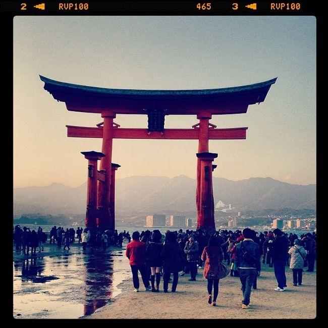厳島神社、大鳥居。