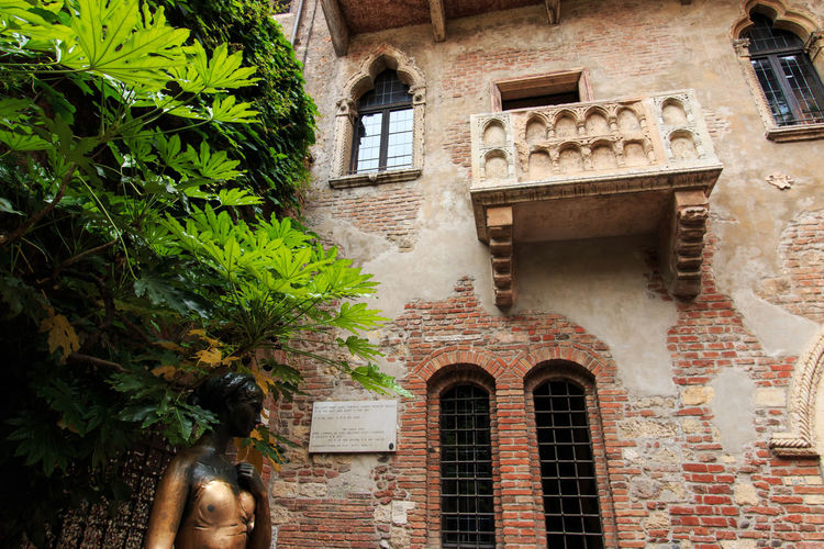 Juliet's balcony - Verona - Italy Arch Architecture Arena Building Exterior Built Structure City Coluseum Creeper Plant Day Exterior Green Color Growth House Italy Leaf Low Angle View No People Outdoors Plant Residential Building Romeo And Juliet Town Verona Vine Window