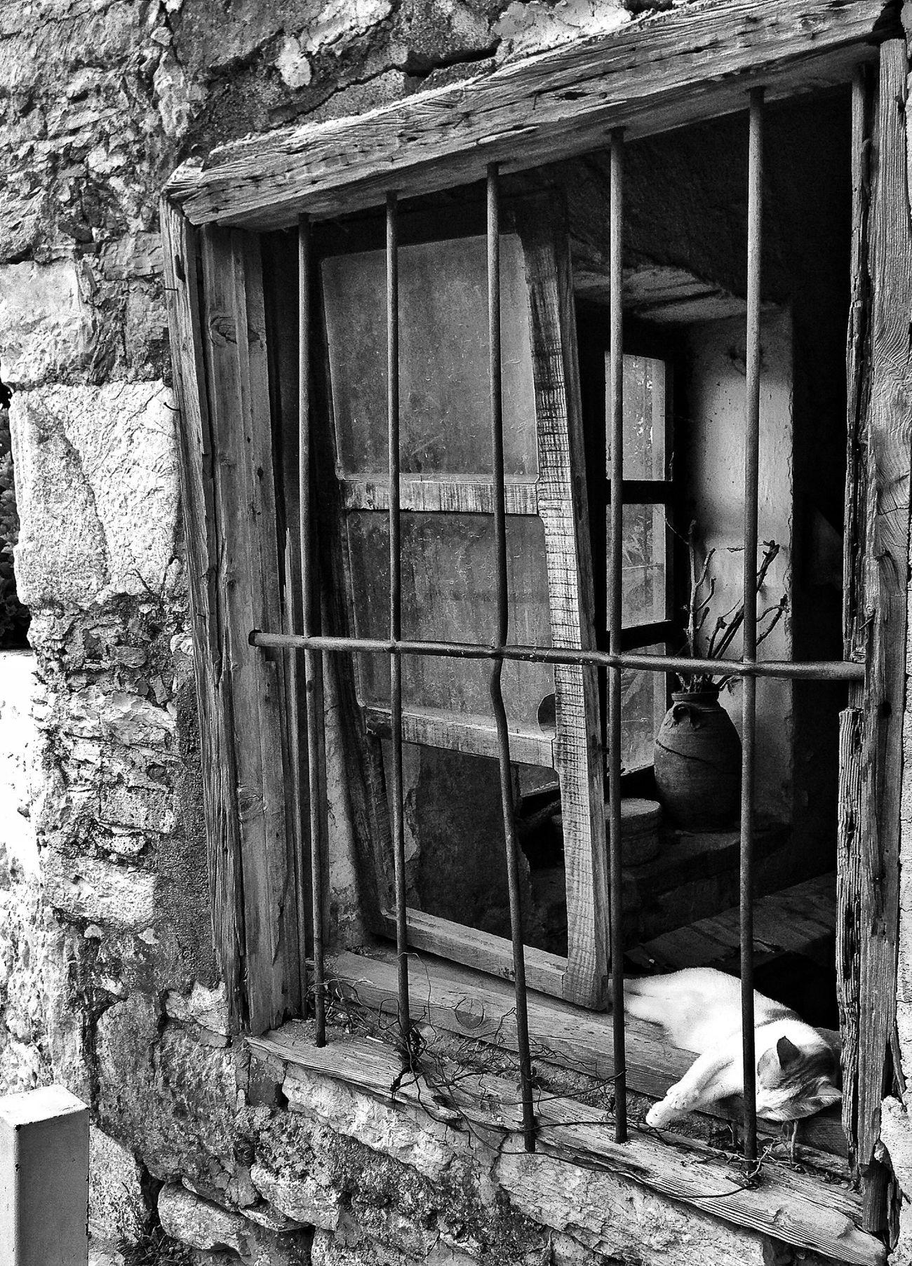 Black & White Blackandwhite Eye4photography  Streetphotography