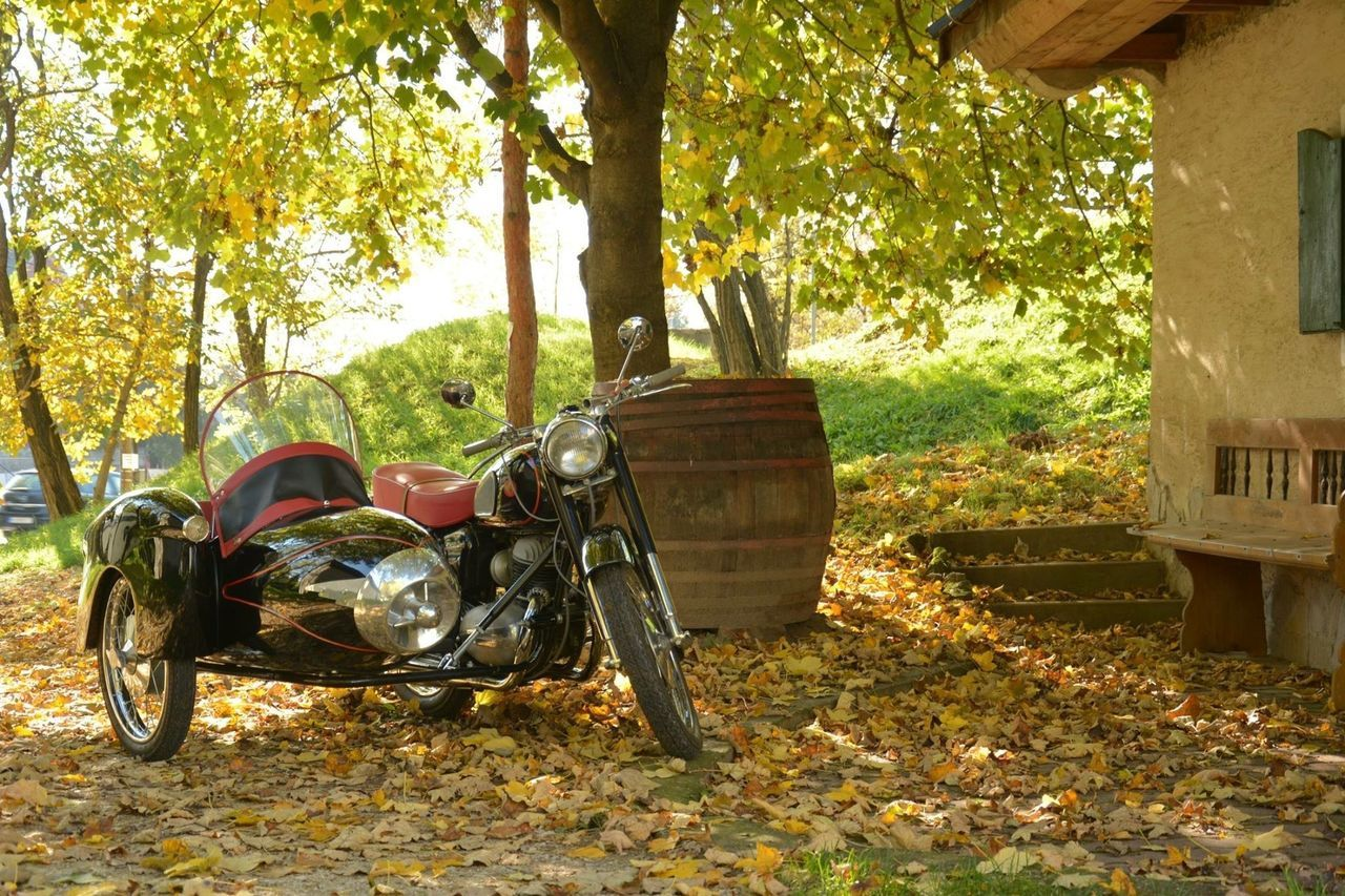 Fall Motorcycle Fall Autumn Colors