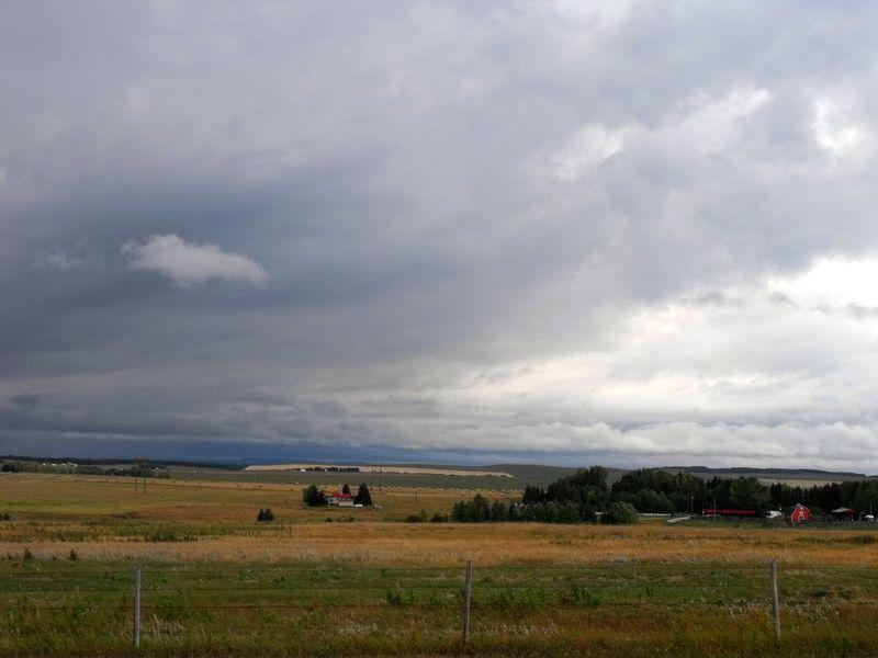 Prairie_collection Prairiescape Alberta Landscape Nature EyeEm Nature Lover EyeEm Sky Lover On The Road Prairies Proveyouaregreen