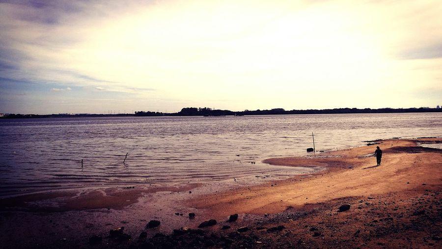 Alone Beach Sunset Calm Beauty In Nature Ocean Sand