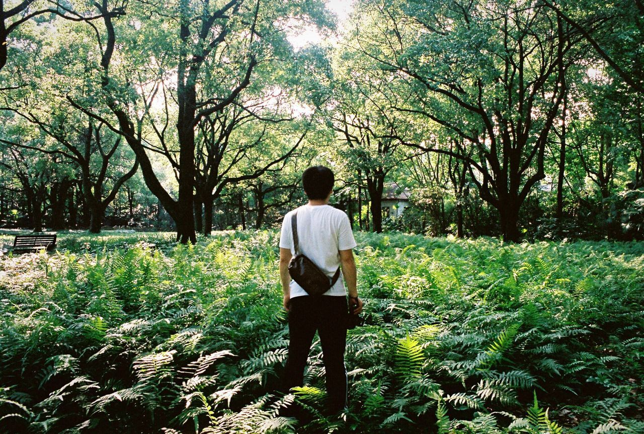 EyeEmNewHere Film Photography Rear View Only Men One Man Only Adults Only One Person Adult Tree Nature Full Length Standing Day Growth People Outdoors Men Real People Beauty In Nature People Of EyeEm The Week Of Eyeem People Photography People Watching The Week On EyeEem Summer
