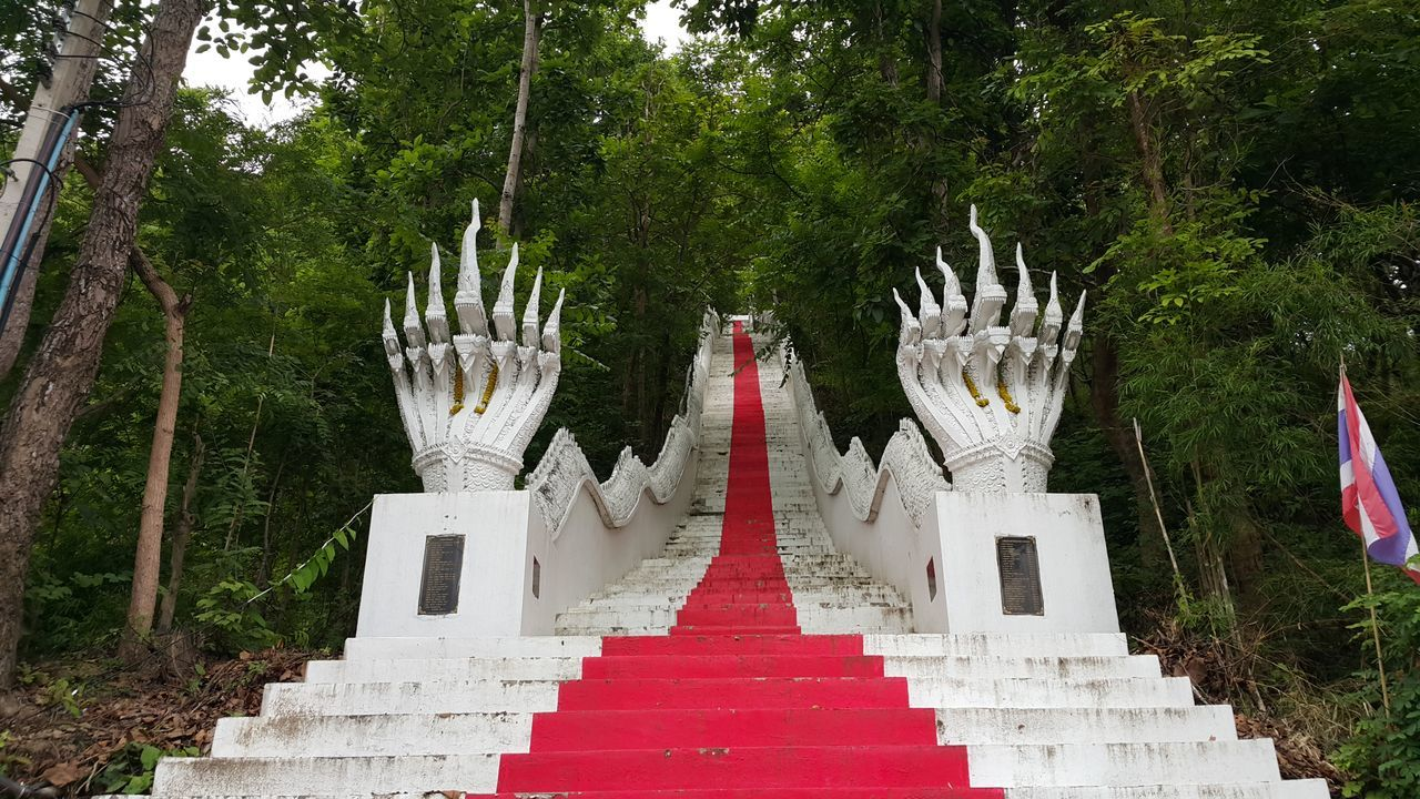 Tree Red Outdoors No People Day Nature Built Structure Stairs Mountain Range วัดพระธาตุดอยเล็ง Buddism Stairway Buddisttemple Stairway Moutain View Red Tree Travel Destinations Temple Architecture Religion