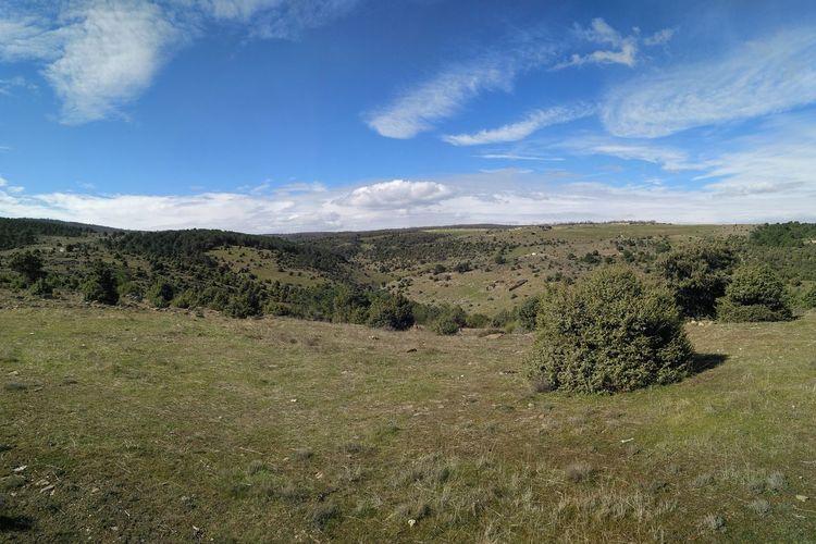 Sky Cloud - Sky Nature Landscape No People Outdoors Day Arrebatacapas Fields And Sky Field Trip Today ♥ツ