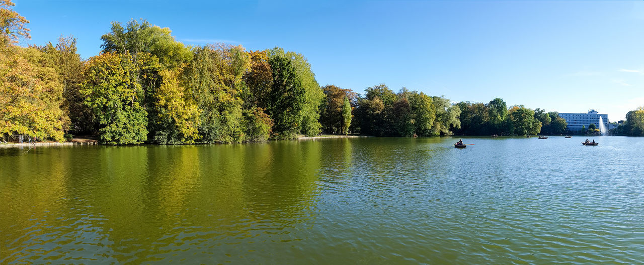 tree, water, waterfront, nature, lake, beauty in nature, tranquility, tranquil scene, outdoors, scenics, day, sky, no people, growth