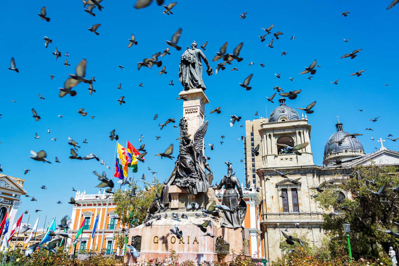 Pigeons flying around Plaza Murillo in La Paz, Bolivia America Architecture Bolivia Bolivian Capital Cathedral City Cityscape Day Downtown La Paz Landmark Latin Main Murillo Outdoors Palace Plaza South Square Street Tourism Town Travel Urban