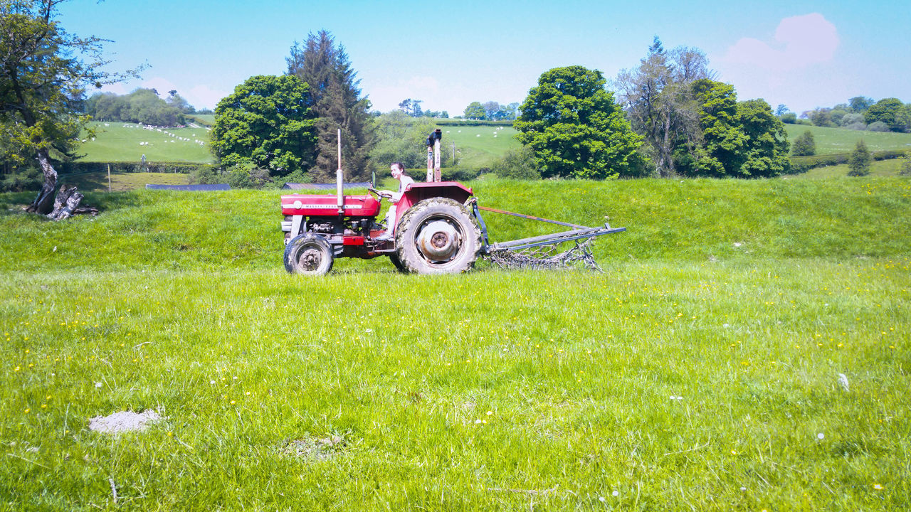 A Girl Driving a Tractor across a Field on a Farm Green Color Agricultural Machinery Agriculture Nature Tree Growth Agricultural Equipment Tractor Flower Land Vehicle Sky Outdoors Day Farmland Wales Driving Lesson First Lesson Teenager Red Tractor Rural Scene