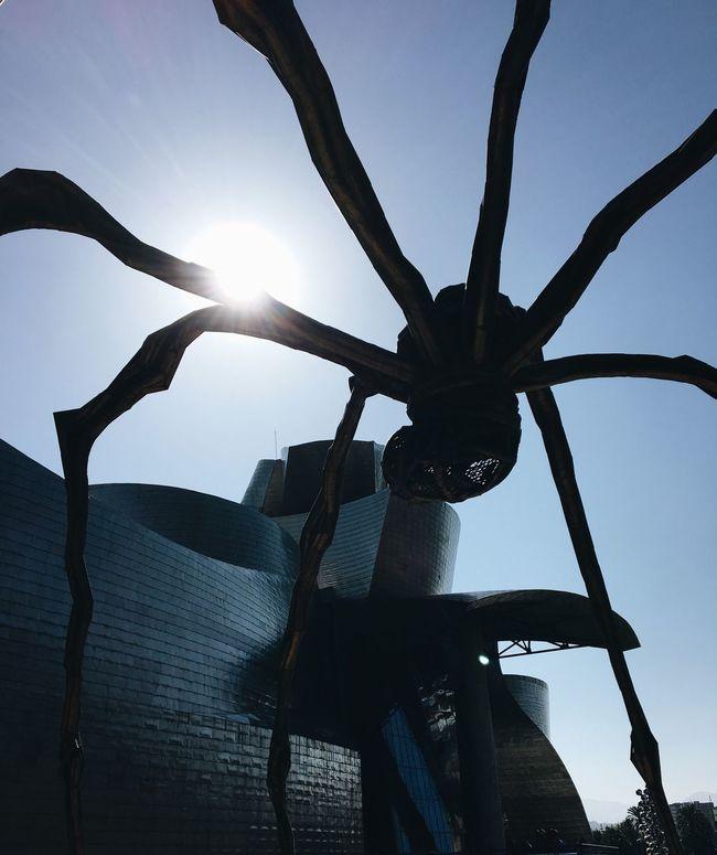 Pivotal Ideas Bilbao Bilbao Bilbaolovers Guggenheim SPAIN Paisvasco BasqueCountry Holidays Summer Contraluz