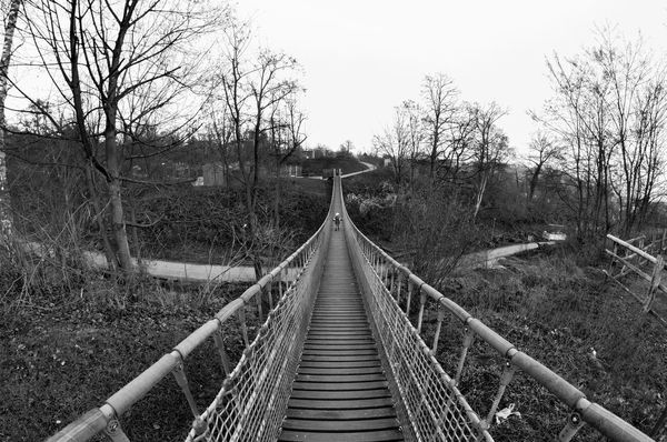 Black & White Black And White Black And White Photography Black&white Blackandwhite Blackandwhite Photography Blackandwhitephotography Bridge Bridge View Brücke Connection Danger Day Fish Eye Fish Eye Effect Fish Eye Lens Fisheye Nature Outdoors Perspective Schwarz & Weiß Schwarzweiß Schwarzweiß The Way Forward Wood - Material