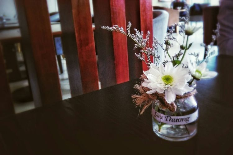 Mobile Photography EyeEm Nature Lover Flower Flower Collection Coffee Time