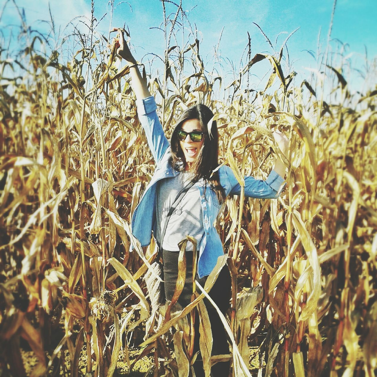 Beautiful stock photos of smile, Agriculture, Arms Raised, Casual Clothing, Caucasian Ethnicity